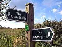 coast path.jpg (7361 bytes)