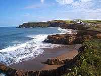 widemouth1.jpg (5785 bytes)